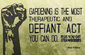 guerrilla gardening movement