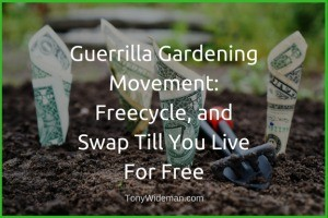 Guerrilla Gardening Movement