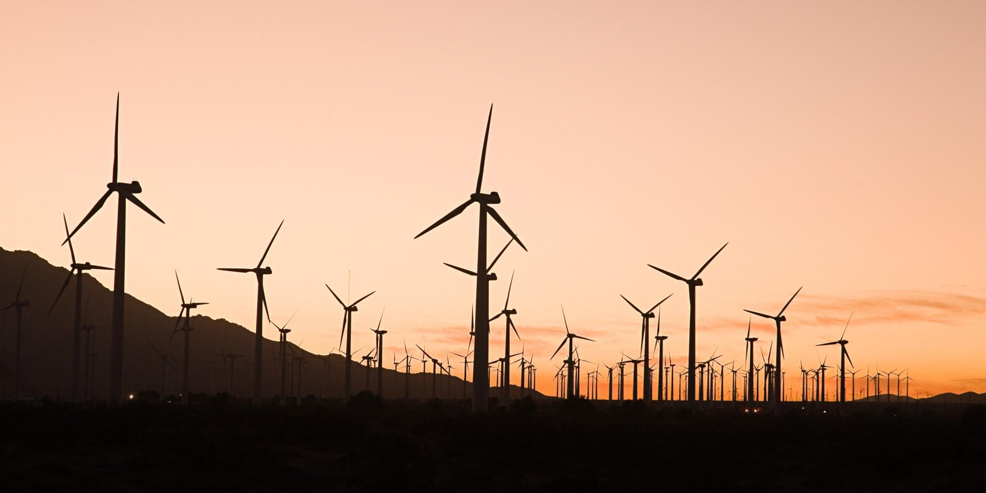 Wind Farms Flourish Across The U.S. As Interest In Renewable Energy Skyrockets